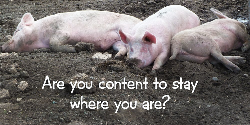 content to stay where you are