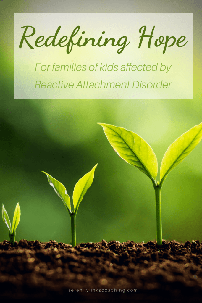 Redefining hope for families of RAD kids – Traumatized children affected by complex PTSD, Reactive Attachment Disorder, FASD, developmental trauma disorder, or other issues related to early childhood trauma exposure.
