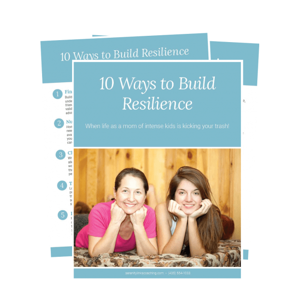 building resilience free download image