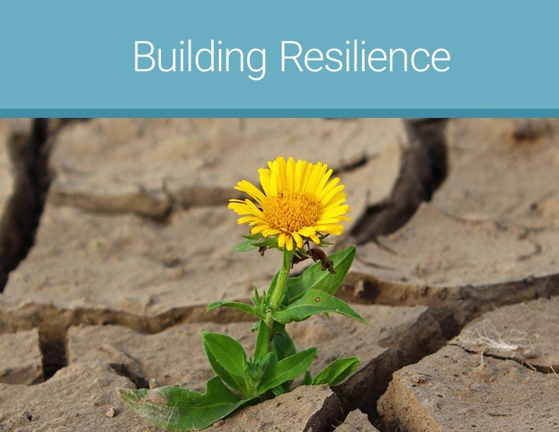 Building Resilience - free tools for moms of traumatized children who struggle with reactive attachment disorder, developmental trauma, complex ptsd, fasd, and other issues related to early childhood trauma exposure
